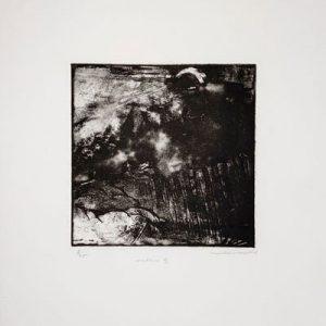 Jean-Charles Taillandier - Nocturne 2